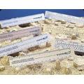 VWR White Plastic Ruler 56510-001