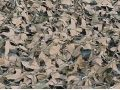 Duck Commander M4 Camo Blind Material Netting