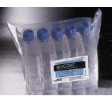 BD BioCoat Cellware, Collagen Type I, BD Biosciences 354400 Multiwell Plates 6-Well, Clear