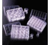BD Falcon Cell Culture Inserts, Sterile, BD Biosciences 353095 Transparent Inserts