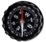 Fury Directional Compass