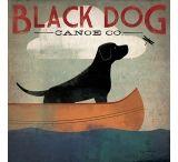 iCanvasART Black Dog Canoe by Ryan Fowler Canvas Print, US Made
