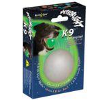 Nite Ize MeteorLight Ball LED Light Up Dog Ball