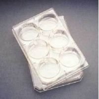 BD Falcon Multiwell Flat-Bottom Plates with Lids, Sterile, BD Biosciences 353936