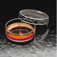 BD Falcon Tissue Culture Dishes, Polystyrene, Sterile, BD Biosciences 353003 Culture Dishes