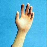 Cardinal Health CR100 Sterile Latex Gloves, Cardinal Health 2Y1628