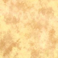 Lastolite 10foot X 12foot Knitted Background - Arizona LL-LB7554