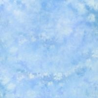 Lastolite 10foot X 12foot Knitted Background - Maine LL-LB7548