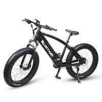 Quietkat ranger 750w electric bike w rear hub motor for Electric bike hub motor planetary gear