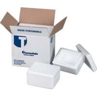 Tegrant Thermosafe ThermoSafe Thick and Thin Wall Insulated Shippers, Expanded Polystyrene, ThermoSafe Brands 676 Thin Wall, Assembled Foam Unit In Corrugated Carton