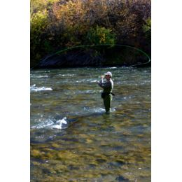 Fishing 101: How to Choose and Buy a Fishing Rod