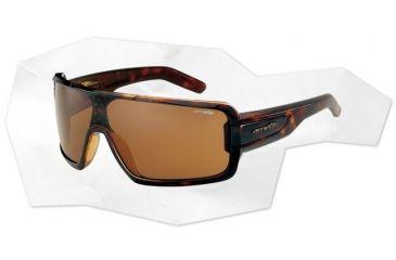 Arnette Cold One Sunglasses - Havana & Gloss Black/Havana Frame and Brown Lens AN4173-03