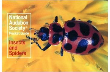 Audbn Pg Insects & Spider, John Farrand, Publisher - Random House