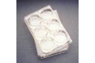 BD Falcon Multiwell Flat-Bottom Plates with Lids, Sterile, BD Biosciences 353935
