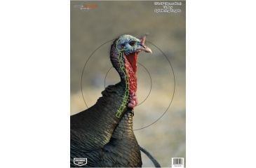 Birchwood Casey Dirty Bird PreGame Animal Targets Turkey 12x18 Inch 8 Per Package