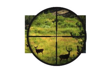 BSA Optics - 30/30 Reticle
