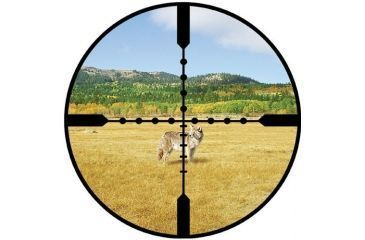 Burris Ballistic Mil Dot Reticle View