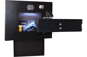 Cannon Security Products TV Wall Vault WV-TV-01