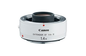 Canon EF 200-400mm f/4L IS USM Extender 1.4X 5176B002