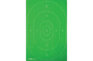 Champion Targets LE B27C Repair Center, 12.5 x 18.5in, Green - 100pk