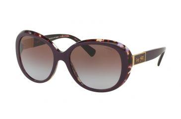4230aeec7d Coach L094 CARTER HC8120 Sunglasses 537868-57 - Purple Tortoise Frame