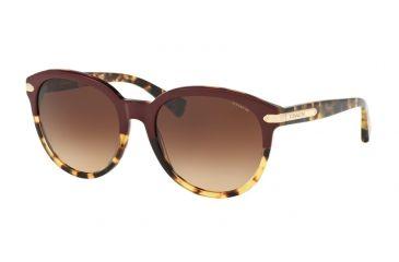 bf3cb56626 Coach L111 HC8140 Single Vision Prescription Sunglasses HC8140-543713-55 -  Lens Diameter 55