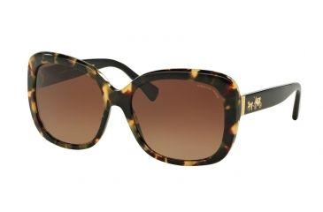 7e367178fe2 Coach L139 HC8158 Sunglasses 5324T5-58 - Dark Vintage Tortoise  Black  Frame