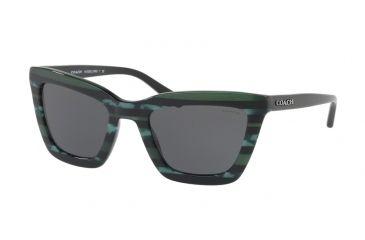 a7b981e2281 Coach L1630 HC8203 Sunglasses 547687-54 - Emerald Glitter Varsity Stripe  Frame