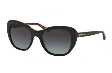 7e763e954c00b Coach L1631 HC8204 Sunglasses 544211-52 - Black Black Tortoise Frame