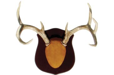 Do All Outdoors Cam1true Classic Antler Mount