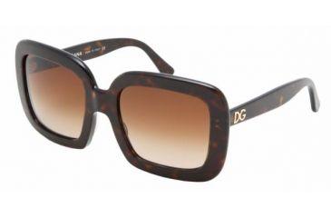 Dolce & Gabanna DG4035 #502/13 - Havana Brown Gradient Frame