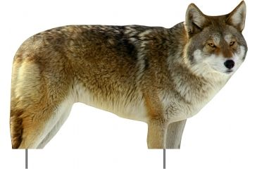 Extreme Dimension Wildlife Calls Phantom HD Decoy-Coyote ED-PD-512