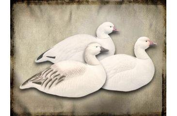 FA Last Pass Snow Goose, Shells Upright 474193