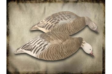 Final Approach Blue Goose, Shells Feeder 474198