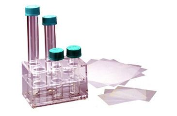 Labnet Large Hybridization Mesh, 23 X 23 Cm, Pack Of 5 Sheets H9088