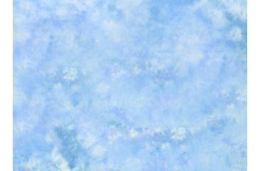 Lastolite 10x24 Washable Muslin Background, Maine LLLB7848