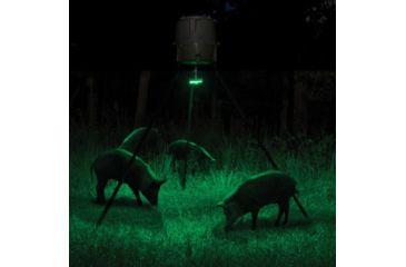 3-Moultrie Feeder Hog Light