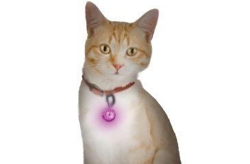 Nite Ize PetLit LED Collar Light, White LED - Jewel Pink PCL02-03-12JE
