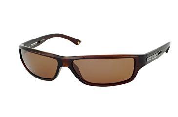 Polaroid Douglas Bifocal Sunglasses, Brown Frame PDX8104YBF