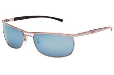 Police Sun glasses 8307 with Shiny Palladium 579V Frame
