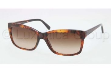 Ralph Lauren RL8093 Sunglasses 538613-5616 - Havana Frame, Brown Gradient Lenses