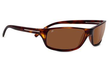 7d3c1f37e3 Serengeti Pisa Progressive Prescription Sunglasses