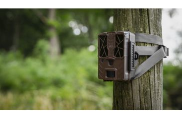 12-Spypoint FORCE-20 Ultra Compact Trail Camera