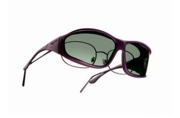 Vistana Soft Touch Violet Frame L Gray Polare Lens Sunglasses WS306G