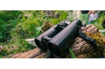 3-Zeiss Victory SF 8x42 Binoculars