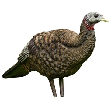 Avian X Turkey Decoy Save Up To 26% Brand Avian X.
