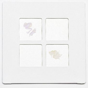 Bd Identification Systems And Reagents, Bd Diagnostics 231746 Bd Dryslide* Oxidase Test Slides Brand Bd.
