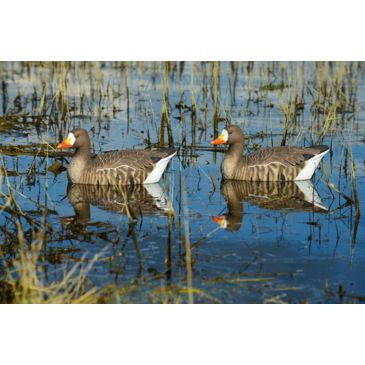 Greenhead Gear Pro-Grade Specklebelly Floaters Decoy Brand Greenhead Gear.