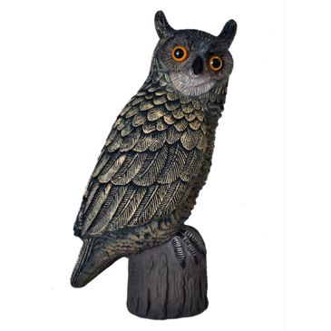 Hard Core Hooter Owl Save $1.99 Brand Hard Core.