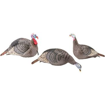 Hunter&039;s Specialties Hs Strut Turkey Decoy Flock Strut-Lite Hen/jake/feeder Henafter Mail-In Rebate Save 18% Brand Hunter&039;s Specialties.